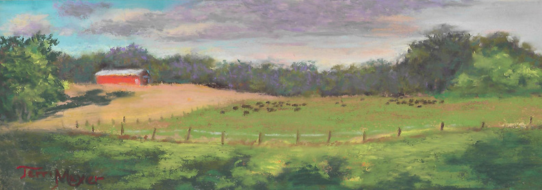 The West Cow Pasture by Terri Meyer