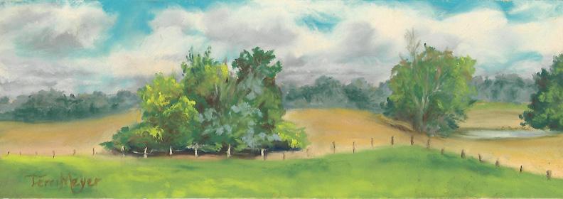 Plein Air Pastel 8-4-16 The South Field