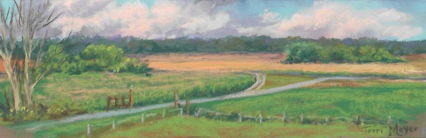 Plein Air Pastel (small) - The Wheat Field - 7-19-16
